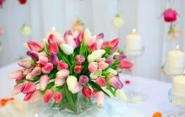 What flowers are the best for Birthday?