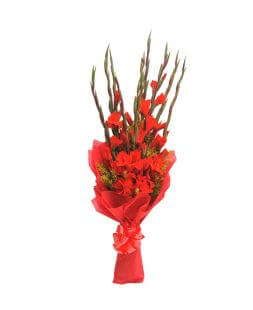 Bouquet with red gladioluses wrapped in fliseline