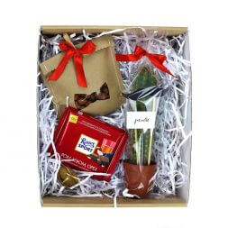 gift set with cactus