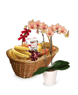set of basket and orchids Natural Power