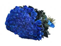 Bouquet of 101 blue roses