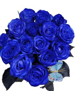 Bouquet of 15 blue roses