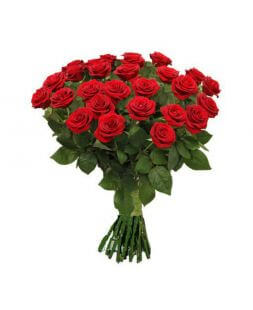 Bouquet of 19 red roses