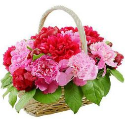 basket of peonies in different colors