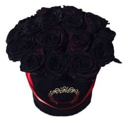 black roses in a hat box
