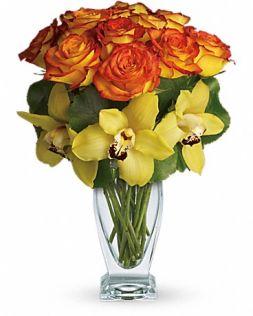 Livrare trandafiri, cumpara trandafiri cu livrare in