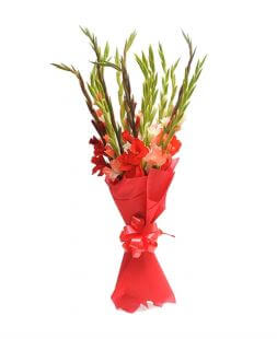 Bouquet with colored gladioluses wrapped in fliseline