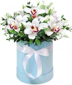 Bouquet of white orchids