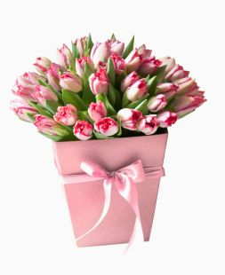 pink tulips in the hatbox