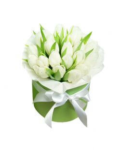 White tulips in box