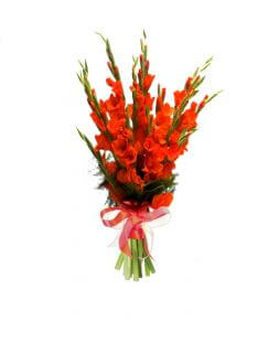 Bouquet with orange gladioluses