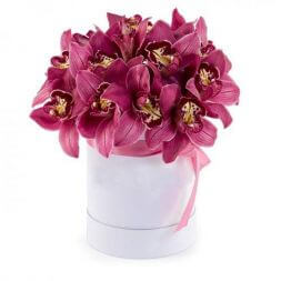 box with pink orchid