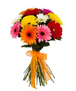 summer bouquet of gerberas
