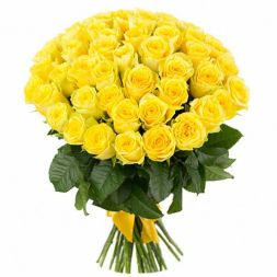 yellow roses 51 pcs
