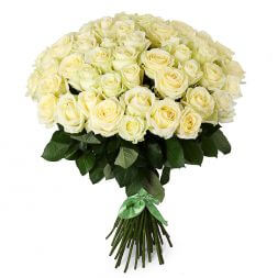 a bouquet of 51 white roses