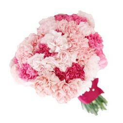 bouquet of red, white, pink carnations