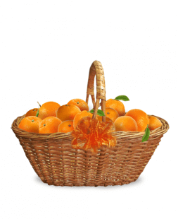 "Basket ""Orange"""