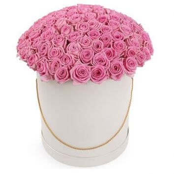 101 pink roses in a hatbox