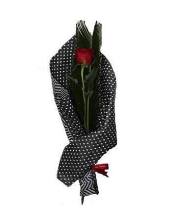 Заказать красную розу 60 см в Молдове